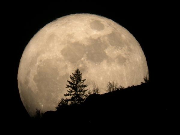 Mơ thấy mặt trăng là điềm báo lành hay dữ?